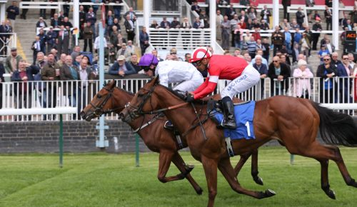 Horse-racing-doncaster-day
